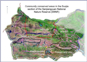 Community conserved areas in the Yangtze Headwaters