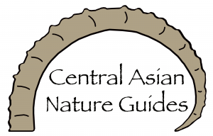 Central Asian Nature Guides_logo 2