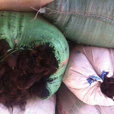 The first batch of yak wool bought from Kegawa in 2012