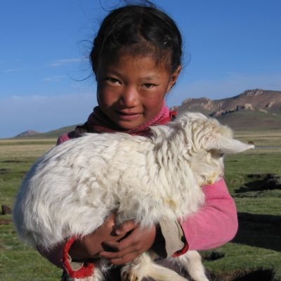 nomad girl and sheep, 2006